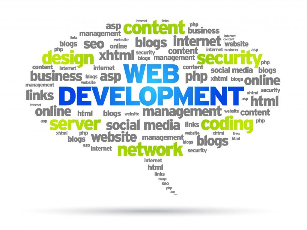 Web Design and Development for Veterinarians